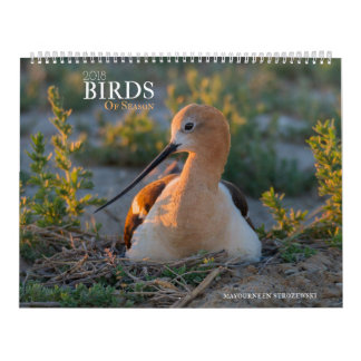 2018 Birds of Season Calendar