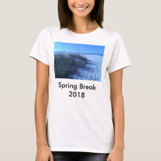 2018 FLORIDA BEACH SPRING BREAK T SHIRT