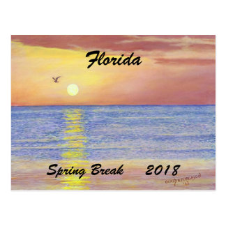 2018 FLORIDA SUNSET SEAGULL SPRING BREAK POSTCARD