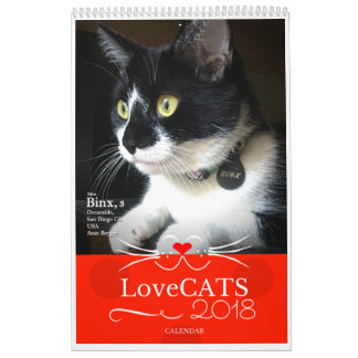 2018 LoveCATS Calendar Second Edition