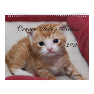2018 ORANGE TABBY KITTIES CALENDAR