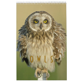 2018  Owl Lovers Wall Calendar
