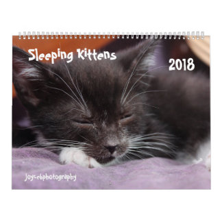 2018 SLEEPING KITTENS CALENDAR
