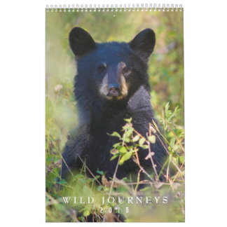 2018 Wildlife Wall Calendar - Wildlife Photography