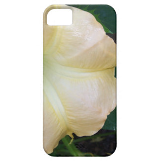 202a Angels trumpet  golden close up iPhone 5 Cover