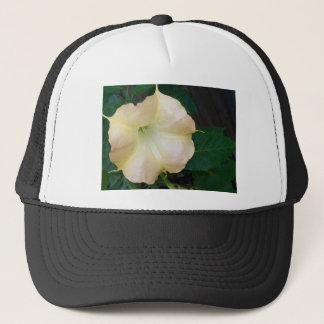 202a Angels trumpet  golden close up Trucker Hat