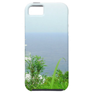 """""""2050 latest modern art world top artist photo """" case for the iPhone 5"""