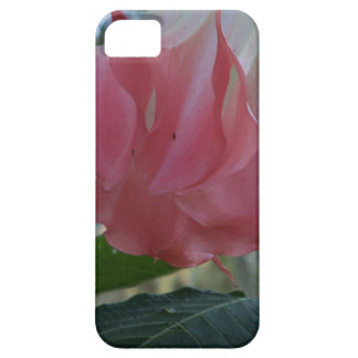205a Angels trumpet pink close iPhone 5 Cover