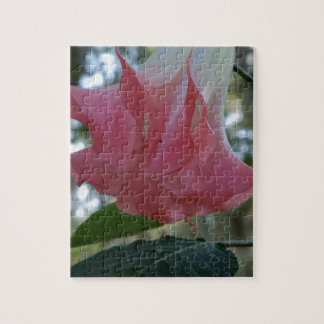 205a Angels trumpet pink close Jigsaw Puzzle
