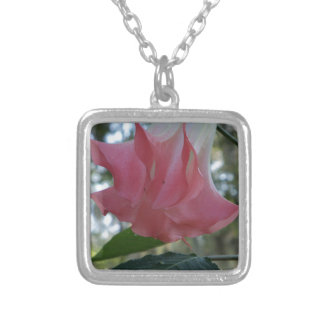 205a Angels trumpet pink close Silver Plated Necklace