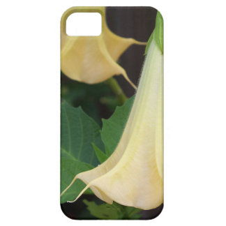 206a Angels trumpet yellow close up Case For The iPhone 5