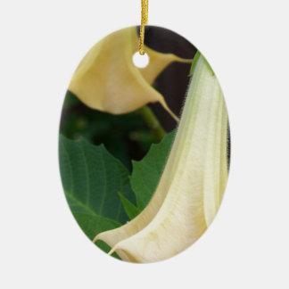 206a Angels trumpet yellow close up Ceramic Ornament