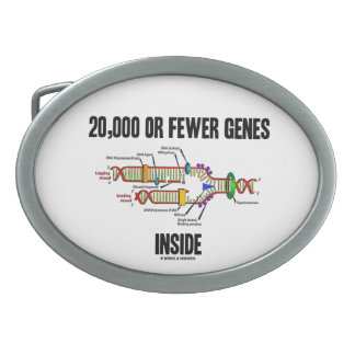 20,000 Or Fewer Genes Inside (DNA Replication) Oval Belt Buckle