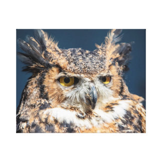 20x16 Great Horned Owl Portrait Canvas Print