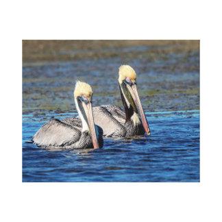20x16 Pair of Pelicans Canvas Print