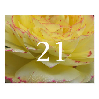 21st Birthday Delicate Floral Postcard