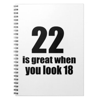 22 Is Great When You Look Birthday Spiral Notebook