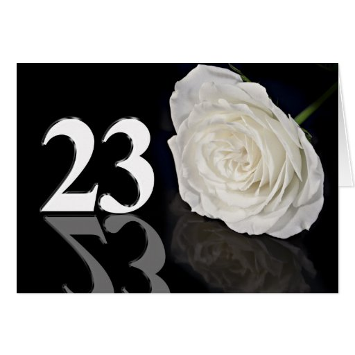 23rd Birthday Card with a classic white rose