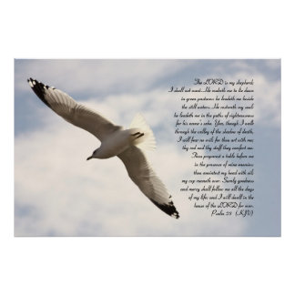 23rd Psalm Biblical Verse with Soaring Sea Gull Poster