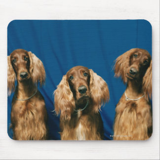 24119671 MOUSE PAD