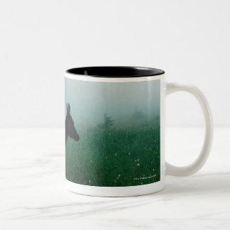 24121885 Two-Tone COFFEE MUG