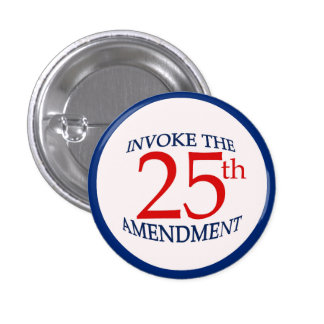 25th Twenty-Fifth Amendment Political Pin Button