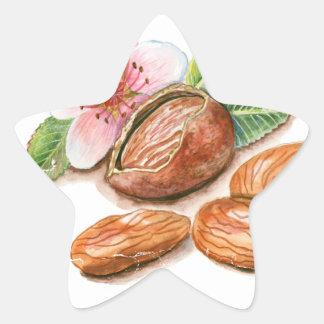 26th February - Pistachio Day - Appreciation Day Star Sticker
