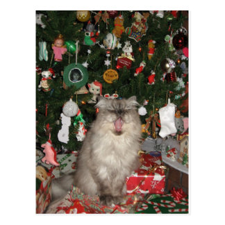 292Rudy Meowy Christmas Post Card