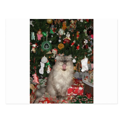 292Rudy Meowy Christmas Postcards