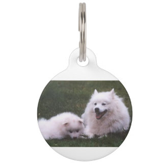 2 American_Eskimo_Dogs Pet Name Tag