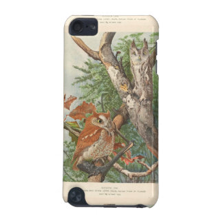 2 angry vintage owls in a tree iPod touch (5th generation) cover