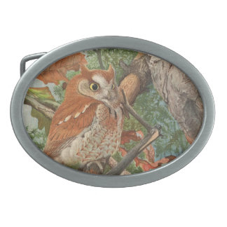 2 angry vintage owls in a tree oval belt buckles