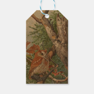 2 angry vintage owls in a tree pack of gift tags