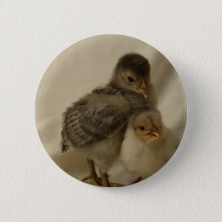 2 Blue/Gray Chicks 2 Inch Round Button