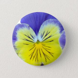 2 Blue Yellow Pansies 2 Inch Round Button