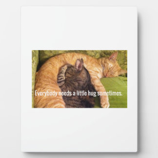 2 Cats Cuddling and Sleeping Plaque