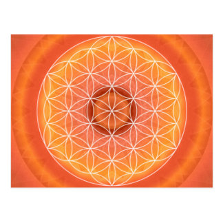 2 Chakra Flower of Life orange Postcard