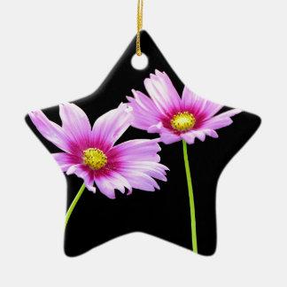 2 Cosmos Ceramic Star Ornament