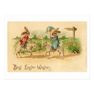 2 Easter bunnies on lambs card Postcard