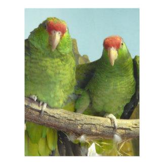 2 green parrots custom flyer
