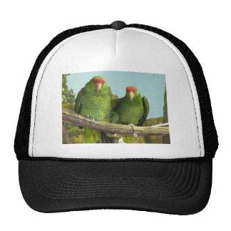 2 green parrots trucker hat