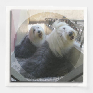 2 old english sheepdogs paper dinner napkin
