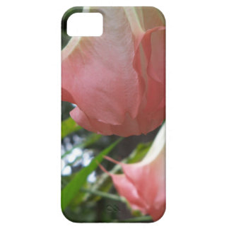 2 pink Angels trumpet flowers iPhone 5 Case