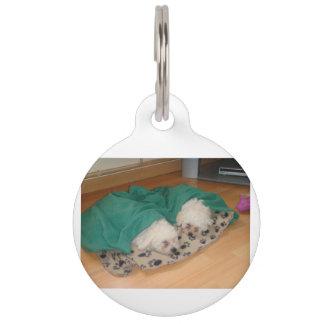 2 Sleepy_Bichon_Puppies Pet Name Tag