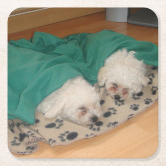 2 Sleepy_Bichon_Puppies Square Paper Coaster