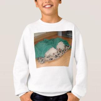2 Sleepy_Bichon_Puppies Sweatshirt