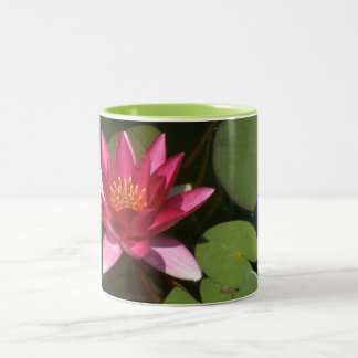 "2 TONED MUG, "" PINK LOTUS BLOSSOM"" Two-Tone COFFEE MUG"