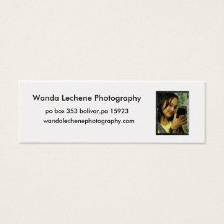 2, Wanda Lechene Photography, po box 353 boliva... Mini Business Card
