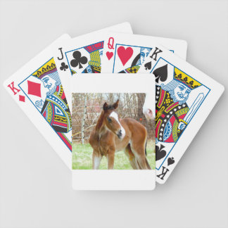 2CUTE HORSE FOAL BABY PONY BICYCLE PLAYING CARDS