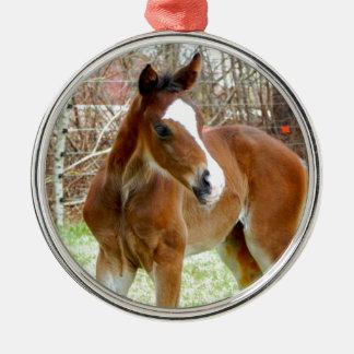 2CUTE HORSE FOAL BABY PONY METAL ORNAMENT